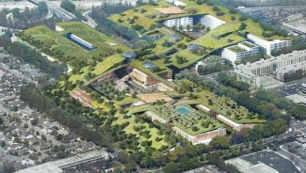 images_phocagallery_3974_green_roof_1509_3974_e02_xxx
