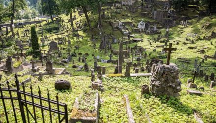 Rasų kapinės