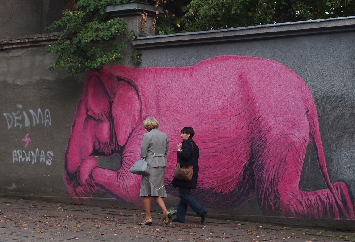 Rožinis dramblys, V.Jakas, 2014. Foto: ©PILOTAS.LT
