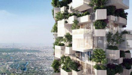 Vertikalus miškas