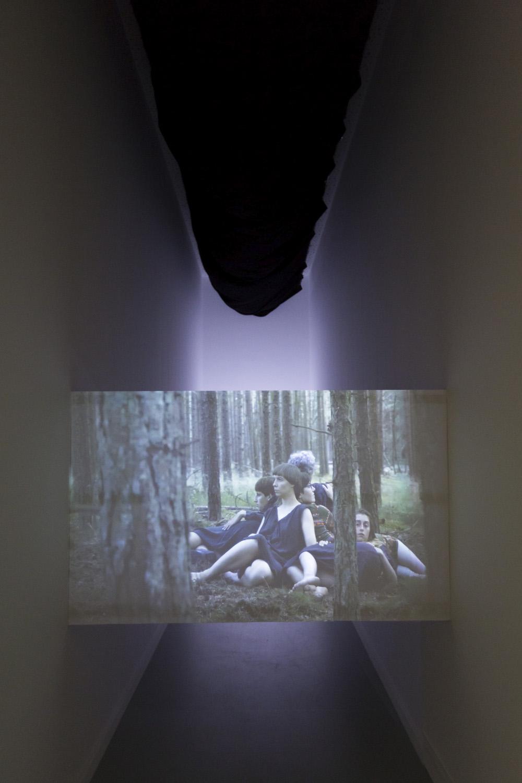 Linos Lapelytės vaizdo ir garso instaliacija