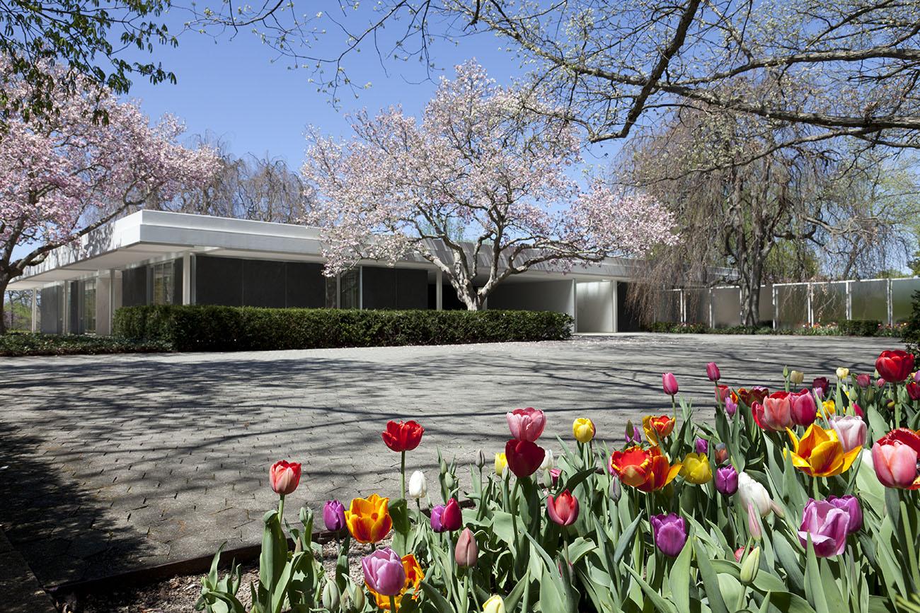 Millerių namas ir sodas JAV Indijanos valstijoje (arch. Eero Saarinen, 1953). Foto: Newfields nuosavybė