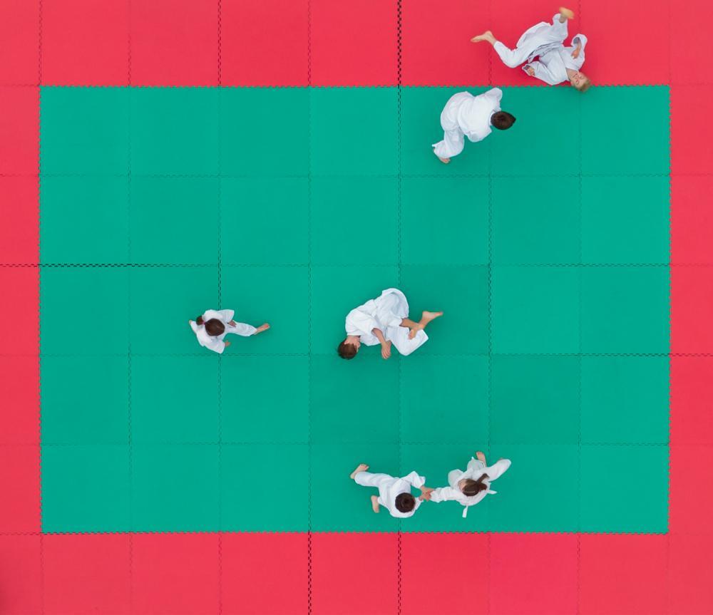 """""""Šachas ir matas. Pavingiuojam aktyvaus laisvalaikio festivalis Vingio parke. Aikido treniruotė"""", S.Žiūra"""