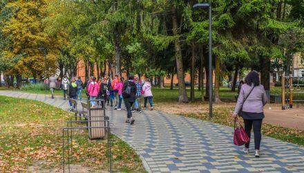 Panevėžio jaunimo sodas