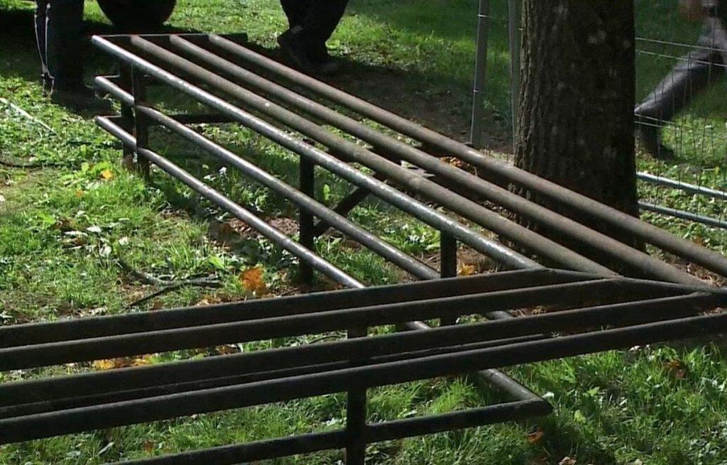 Neteisėtai nupjauti aštuonių rūsio langų šviesduobes juosiantys metaliniai turėklai. Foto: LRT