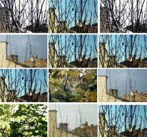 images_pulsas_foto_2209_zdana_pa_130100_e01_xxx