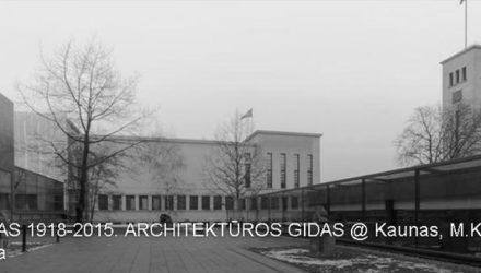 images_phocagallery_3600_gidas_kaun_1502_3600_gidas_e05