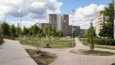 Vilniaus skverai