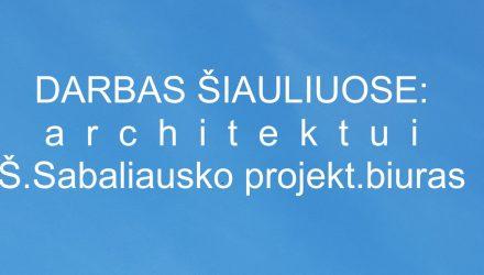 19-04-18-4_sabaliauskas-d-sk
