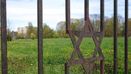 Kauno Žaliakalnio senosios žydų kapinės. Foto: ©PILOTAS.LT